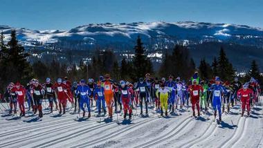 Skiløpere på startstreken til et stort skiløp.