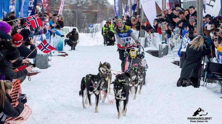Hunder bygger omdømme.  Sigrid Ekran i mål i Alta i 2014.  Foto: Finnmarksløpet/Steinar Vik