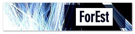 Logo. Forest.
