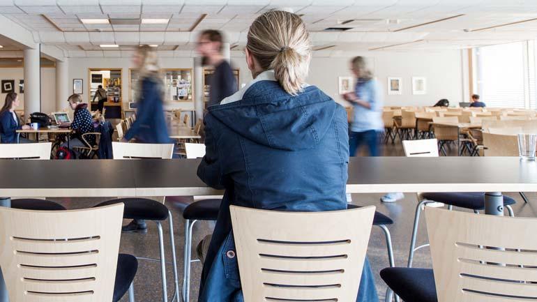 Nærmere 2300 USN-studenter har svart på den landsomfattende undersøkelsen om studenters helse og trivsel.