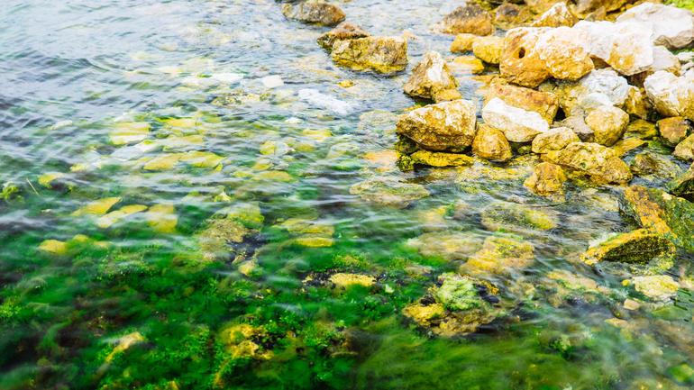 Sjøvann. Illustrasjonsbilde: iStock