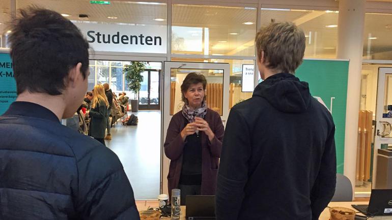 Bilde av studieveileder Anne Blichfeldt i samtale med to elever ved Bø videregående skole.