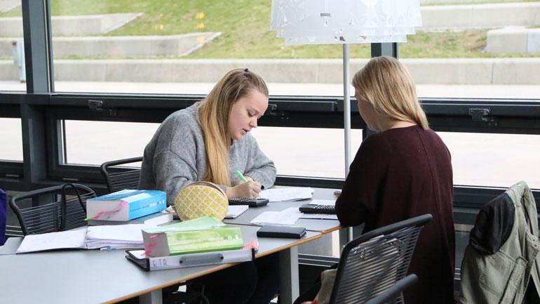 To studenter jobber ved et bord. Illustrasjonsbilde