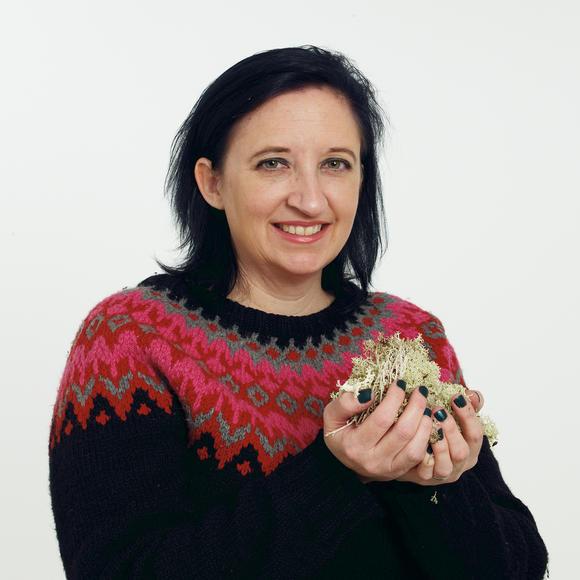 Shea Allison Sundstøl