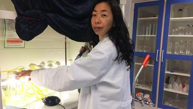 Ikumi Umetani ved Universitetet i Sørøst-Norge har brukt flere år på å studere mikroalger i ferskvann. Nylig disputerte hun for doktorgraden. Foto