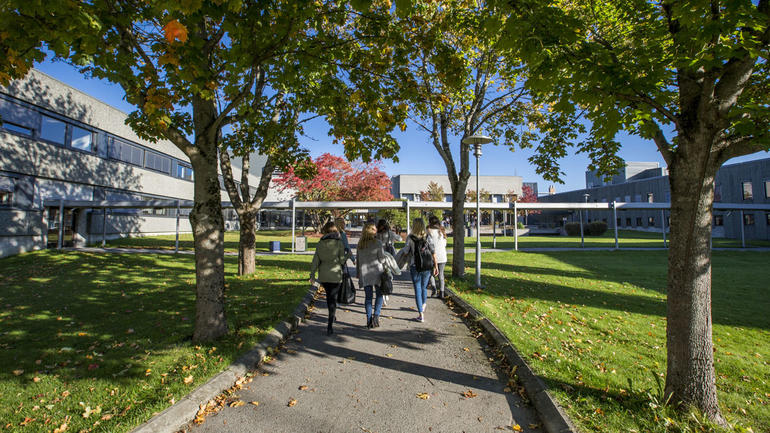 Students walking outside campus Porsgrunn