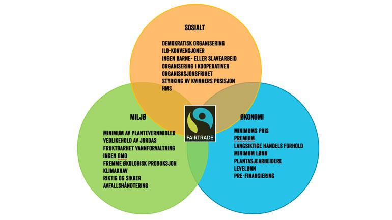 De tre bærekraftsaspektene ved Fairtrade