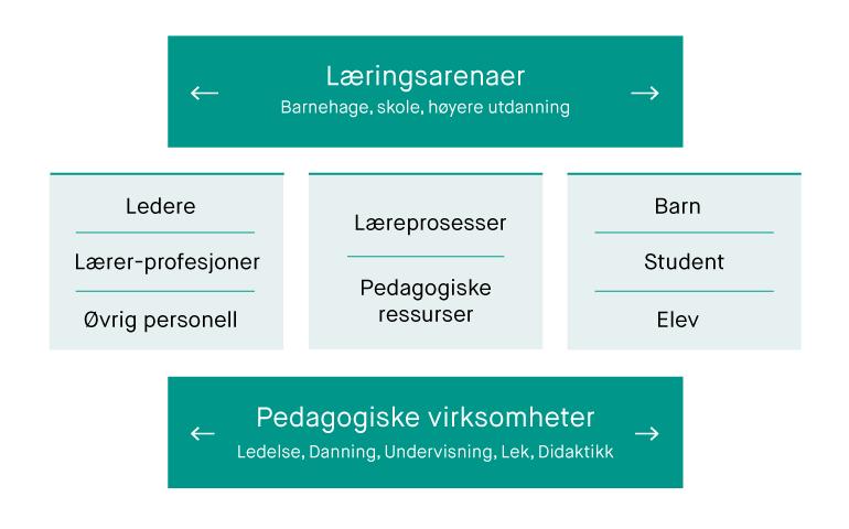 Modell for pedagogiske ressurser og læreprosesser