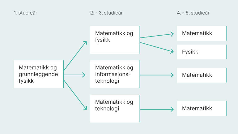 Lektorutdanning studiemodell