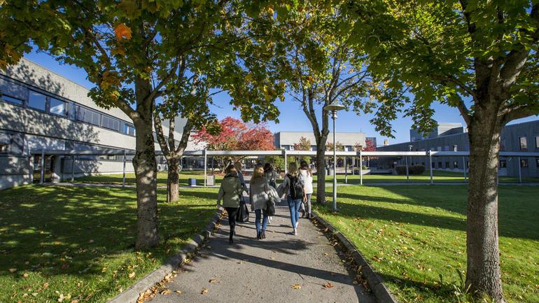 Studenter på gangvei på campus Porsgrunn. Foto