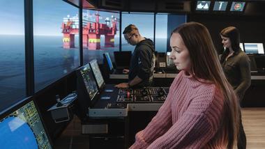 Bridge simulator