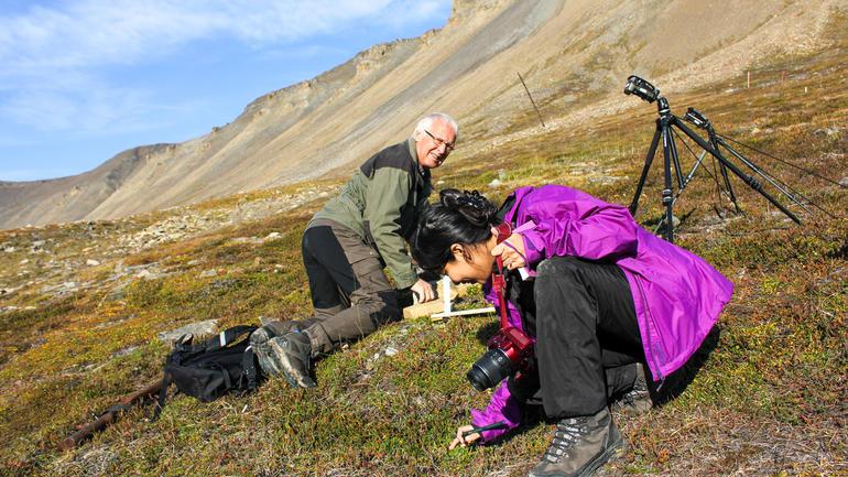 Professor emeritus Arvid Odland og doktorgradsstipendiat Gauri Bandekar tar prøvar av vegetasjon og jordsmonn i Adventsdalen på Spitsbergen.  (Foto: Live Semb Vestgarden