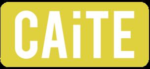 Trening av samtaleferdigheter i lærerutdanningen (CAiTE)