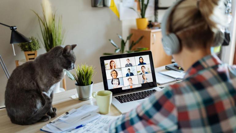 Kvinne på hjemmekontor med katt.