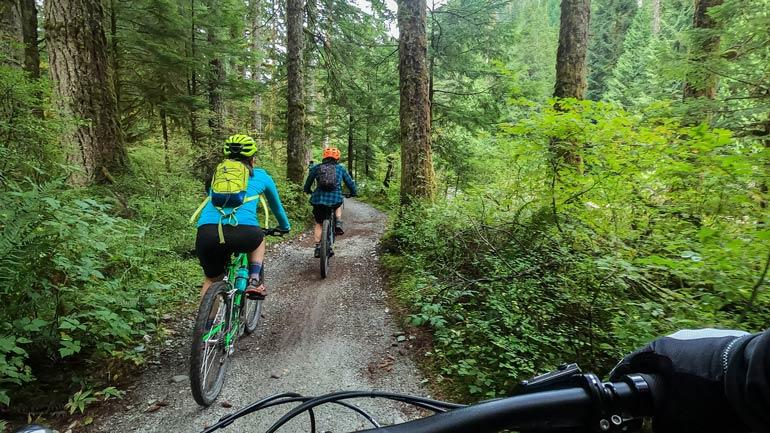 People cykling in the forest. Photo: Istock