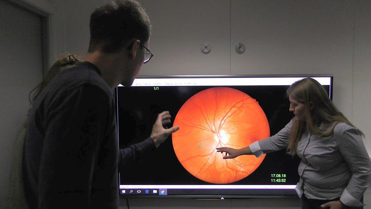 To optikere som studerer øyet på skjerm