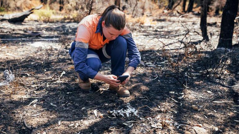 illustrasjonsbilde naturforvaltning. Jente i oransjeblå arbeidsdress i knestående og tar mobilbilde av noe på bakken i skogen.  Foto: iStock