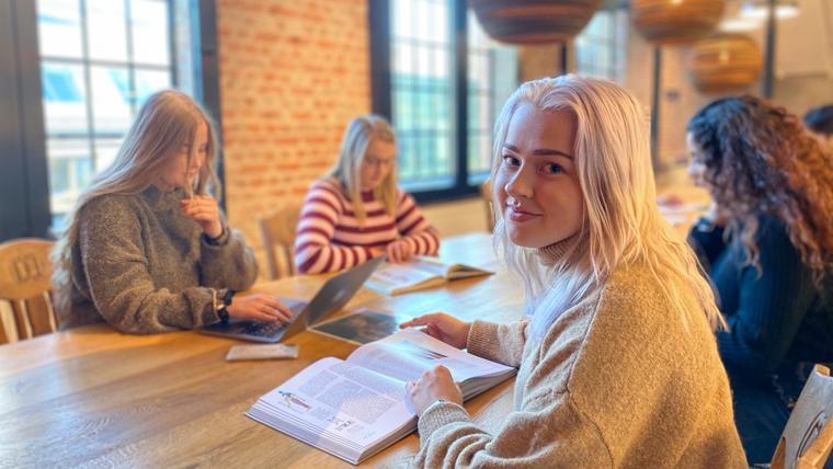 Hvilket studium skal du velge?
